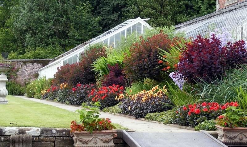 укрепление склона растениями