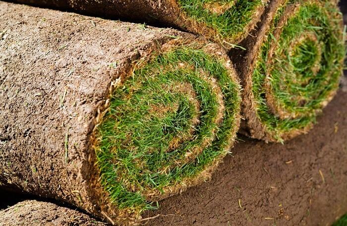 качественный рулонный газон
